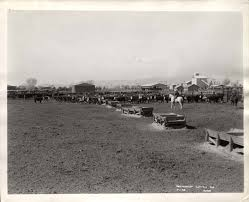 Goodyear Farms circa 1940-notice the cotton gin in the background