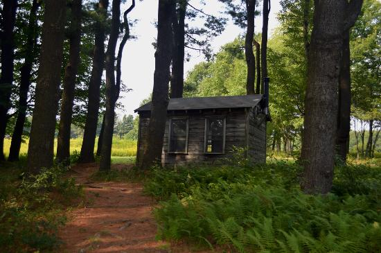 Millay's writing cabin, in which it was considered a capital crime to interrupt her while working.