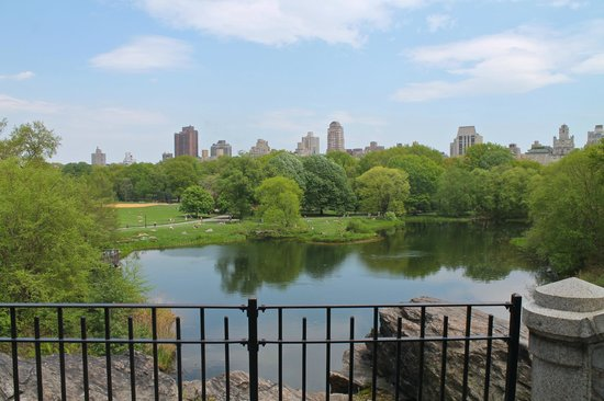 View of Central Park from Castle