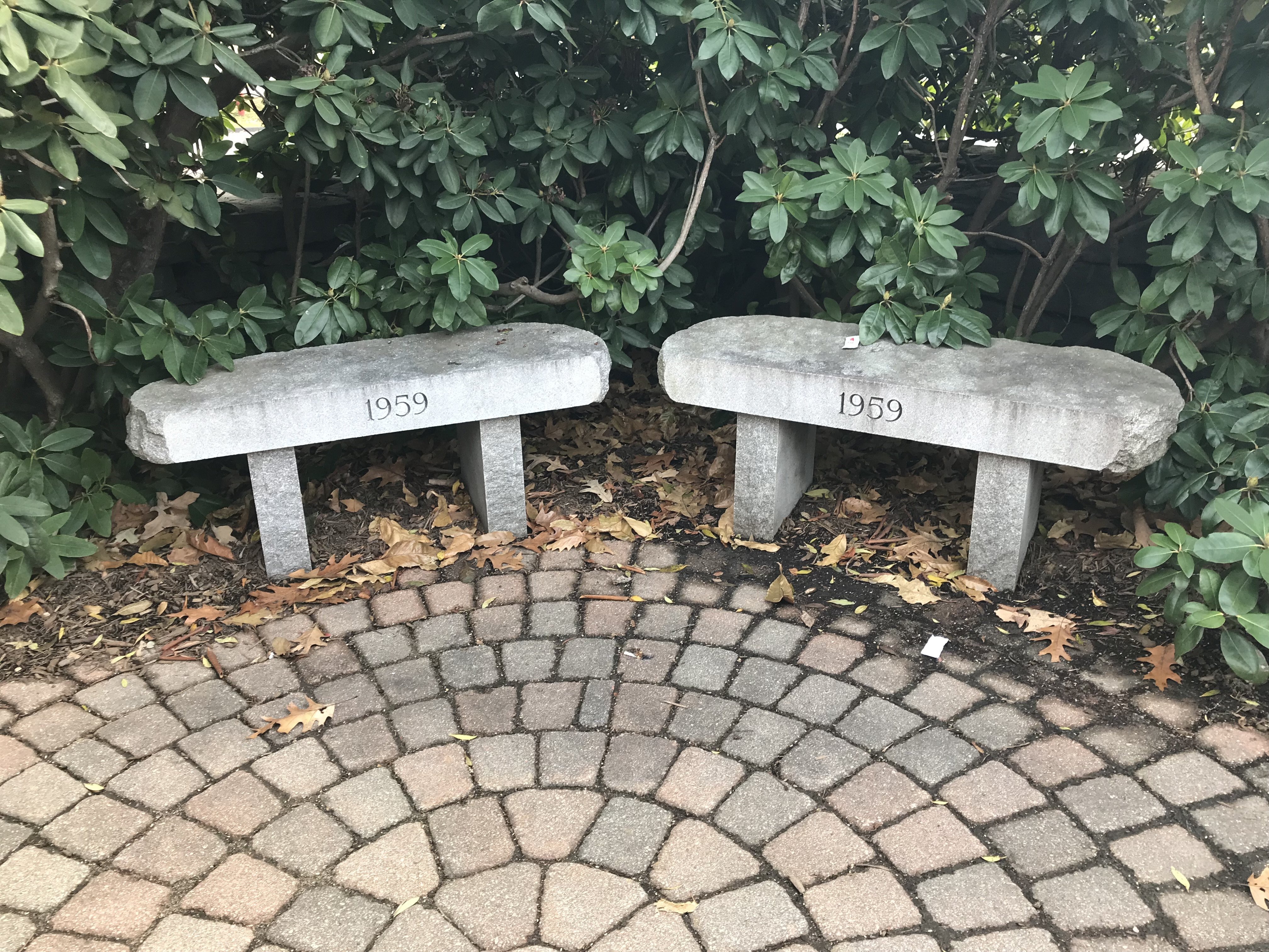 Memorial Hall grounds, Class of 1959 benches, 2017