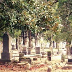 The cemetery is also a resting place for many citizens of Oxford, Mississippi