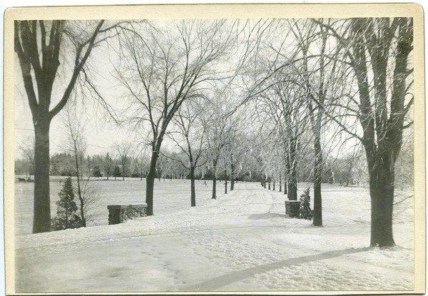 M.A.C. Avenue in snow, photograph, ca. 1910.