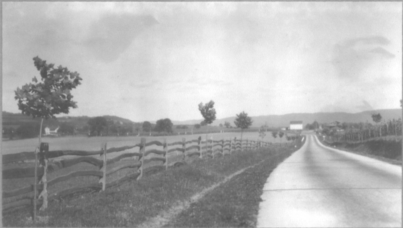 State Route 147 prior to the planting of Sycamore Allee.
