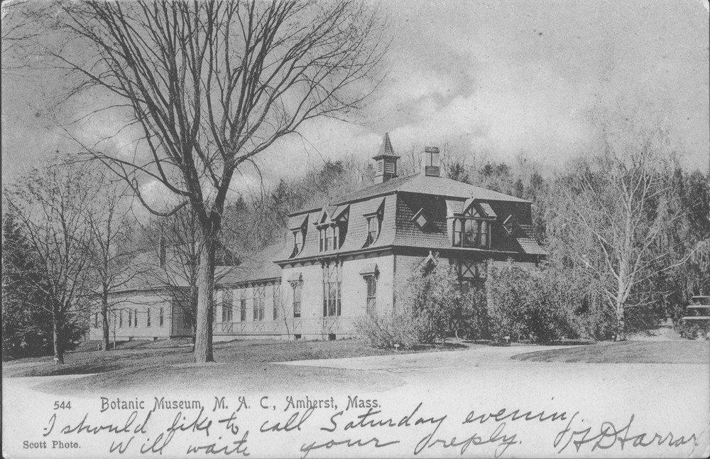 Botanic Museum, postcard, ca. 1910.