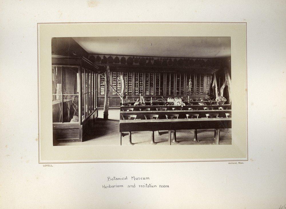 Botanical Museum, Herbarium and Recitation room, ca. 1876.