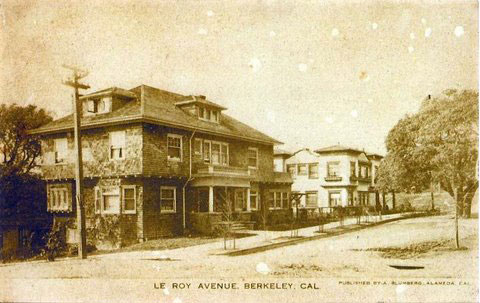 LeRoy Avenue showing Annie's Oak Tree (Original Postcard, from the Sarah Wikander collection).