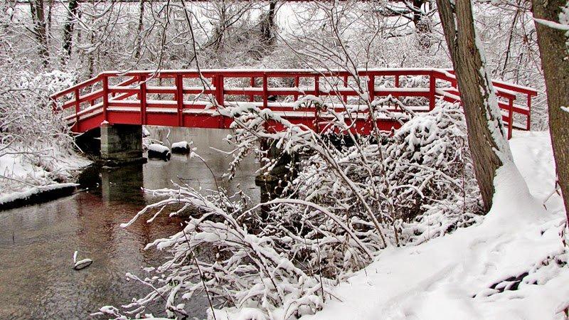 This footbridge over Dykeman Creek stands in stark contrast to the surrounding snow.