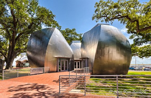 John S. and James L. Knight Gallery (The Pods) is one of five structures on the campus designed by architect Frank Gehry and Gehry Partners. Credit: Ron Buskirk, 2014.