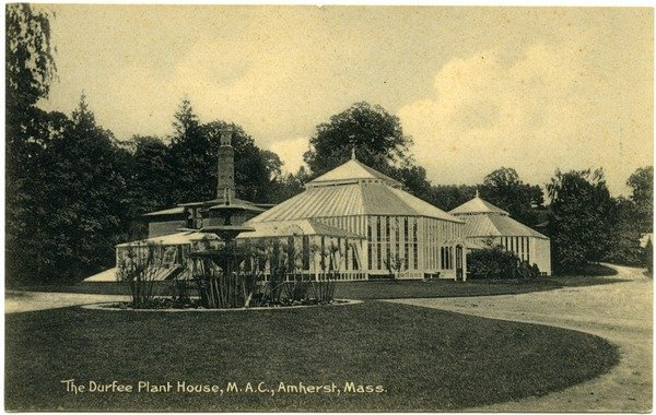 The Durfee Plant House, M.A.C., Amherst, Mass., postcard, ca. 1915 View of Durfee Conservatory, fountain.