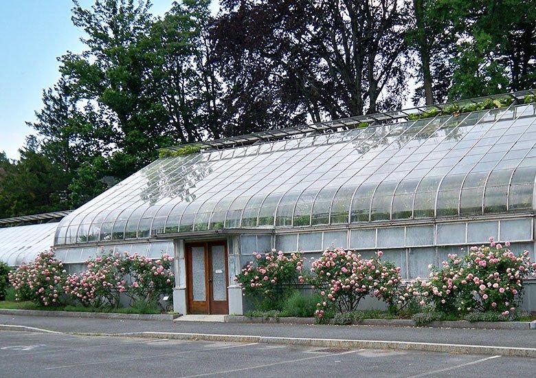 Durfee Conservatory today.