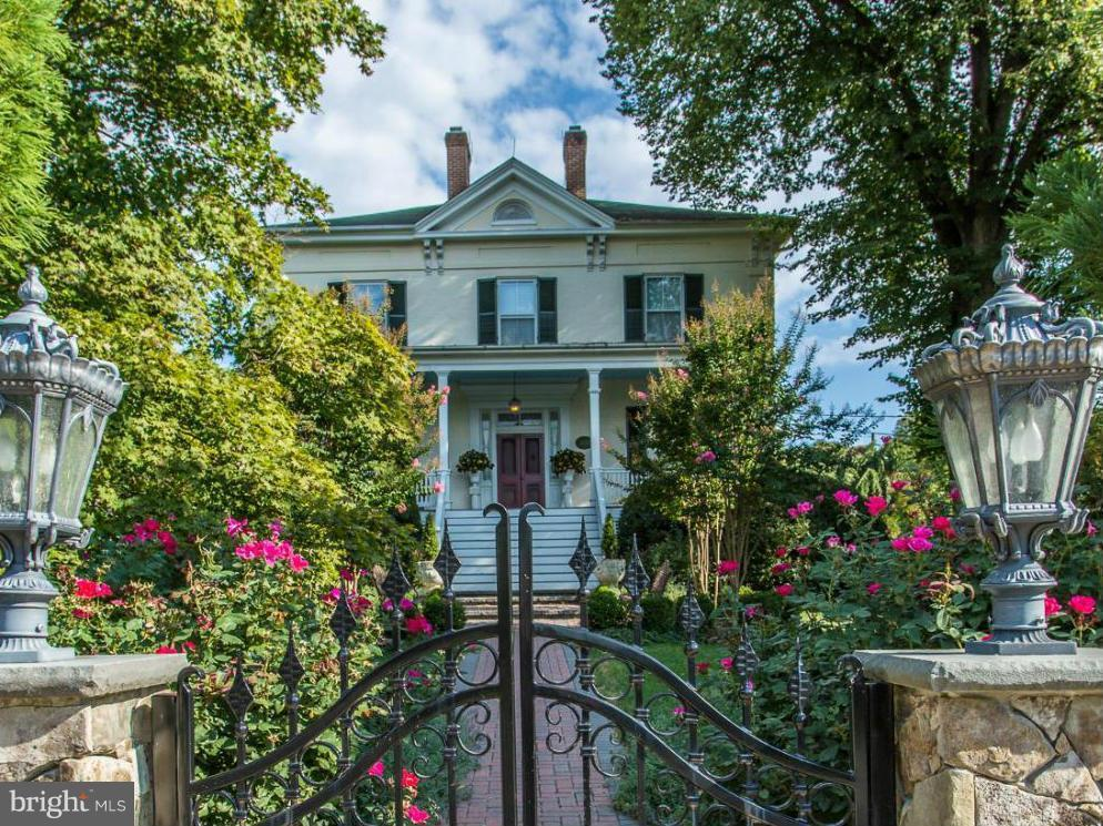 Plant, Property, House, Flower