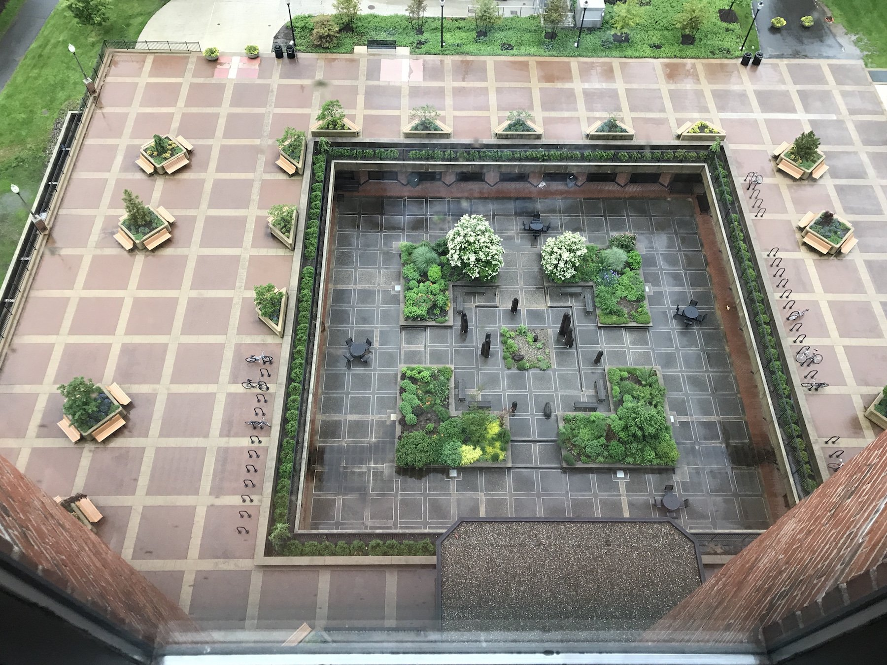 Oswald Tippo Garden, view from the library, 2017.