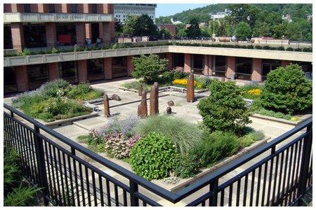 Oswald Tippo Garden.