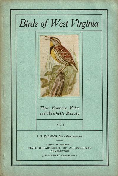 Bird, Font, Feather, Beak