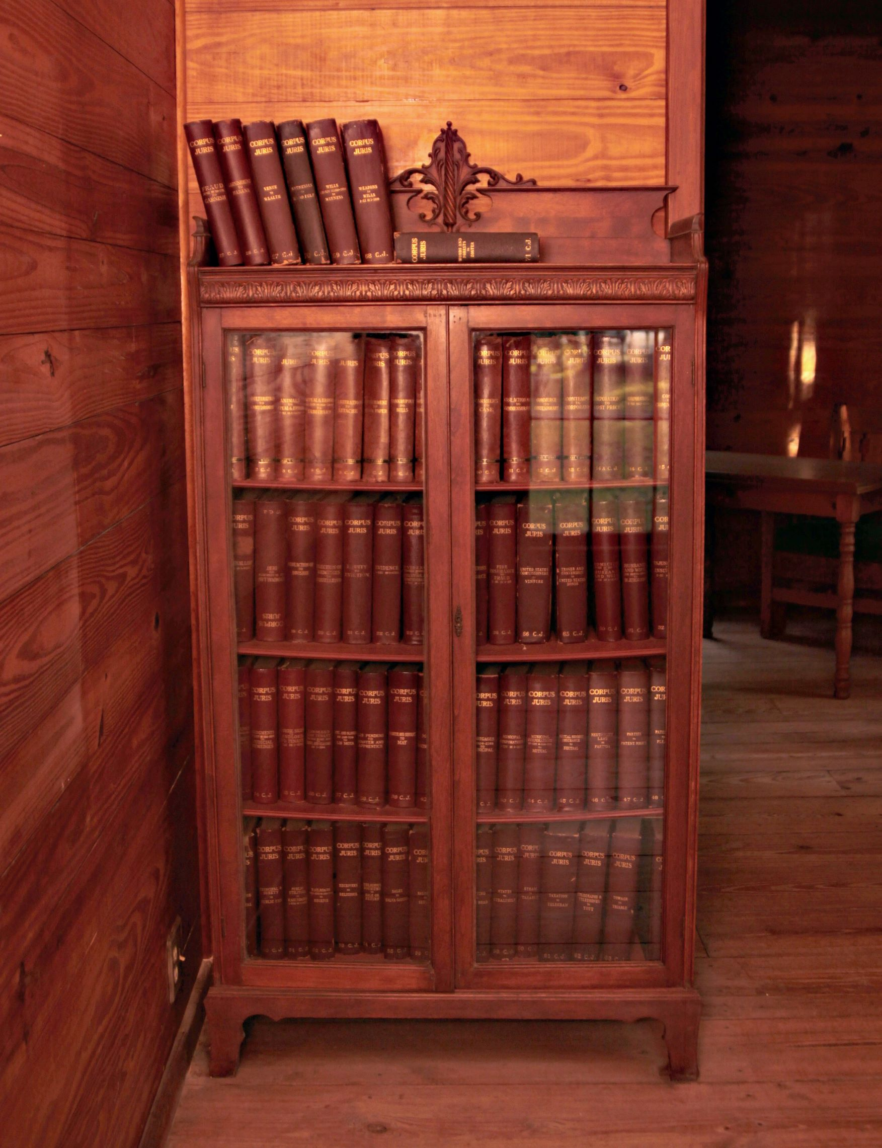 Courthouse Bookcase by Tana Carter
