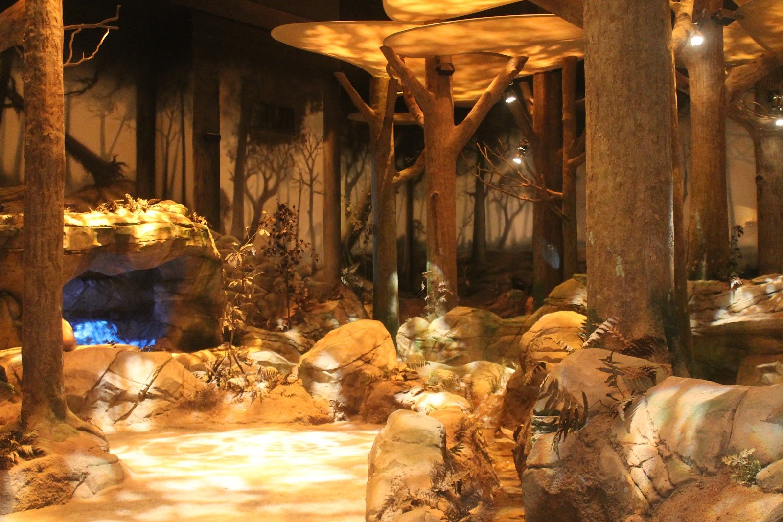 Spirit Forest exhibit (image from American Attractions)