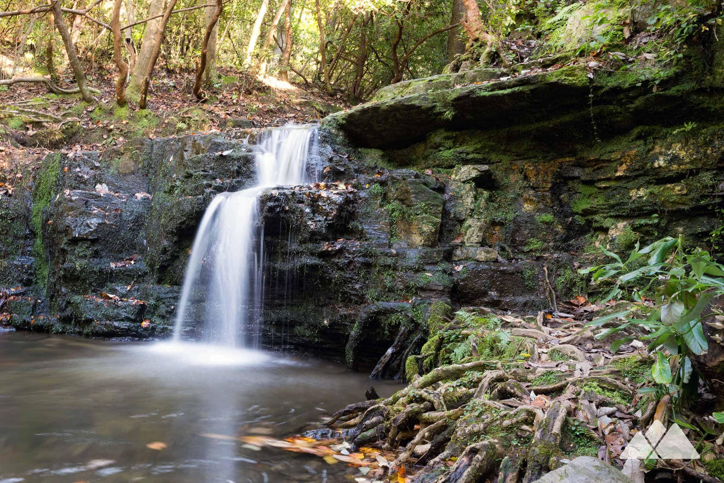 Water, Plant, Fluvial landforms of streams, Spring