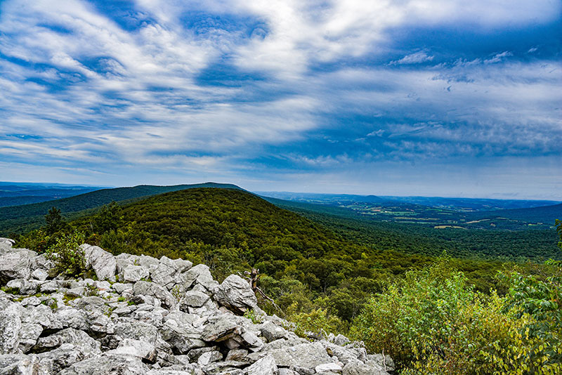 Hawk Mountain Sanctuary has plenty of overlooks to see the beautiful landscape as well as several birds of prey