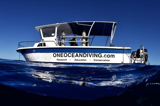 One Oceans Free Dive boat