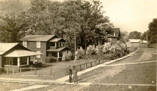 Building, Plant, Tree, House