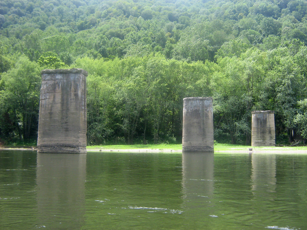 Water, Natural environment, Natural landscape, Tree