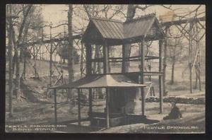 The Pertle Springs bandstand structure over the mineral spring circa 1900. Johnson County Historical Society