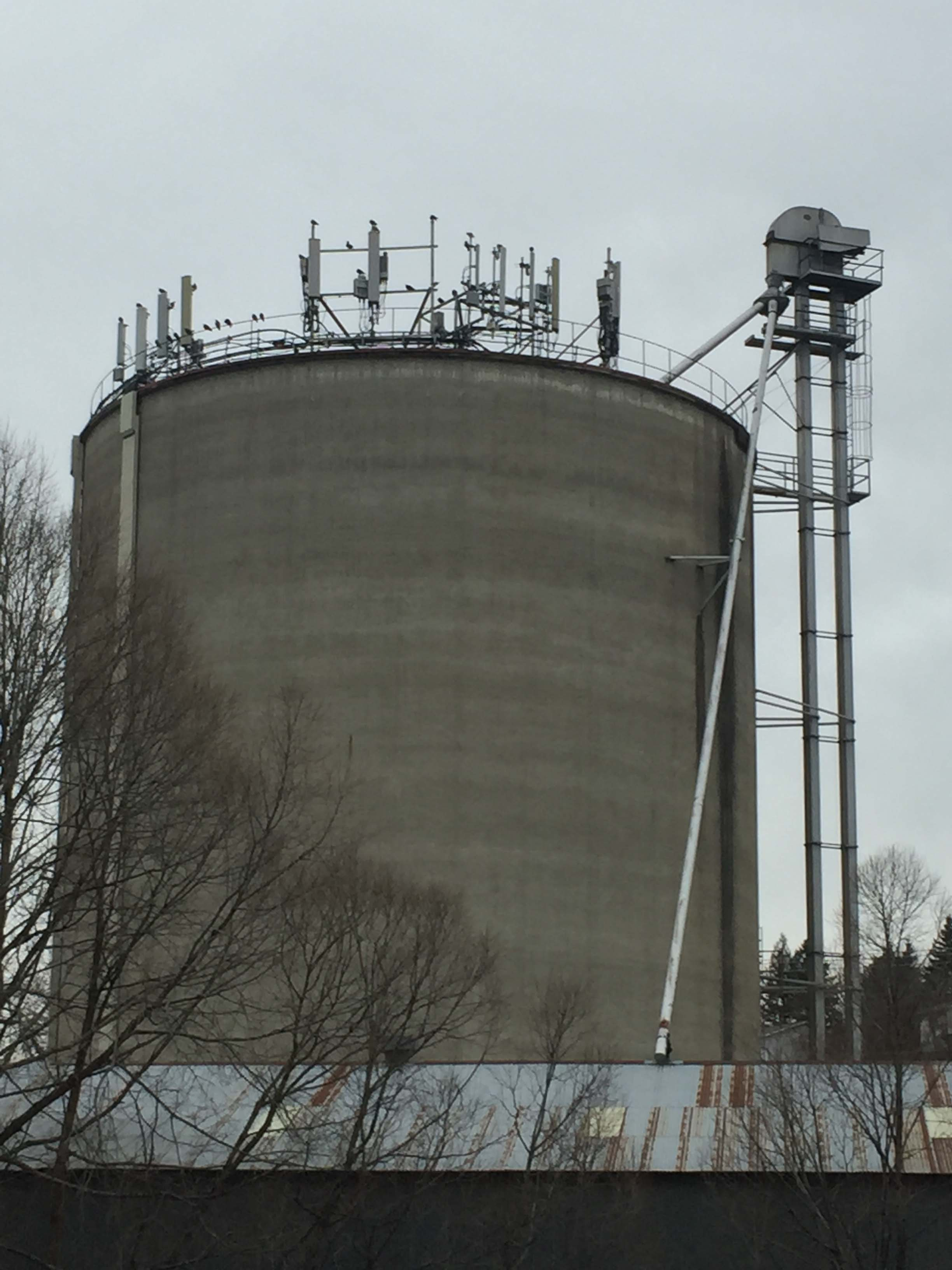 View looking up at the grain silo, taken February 2018.