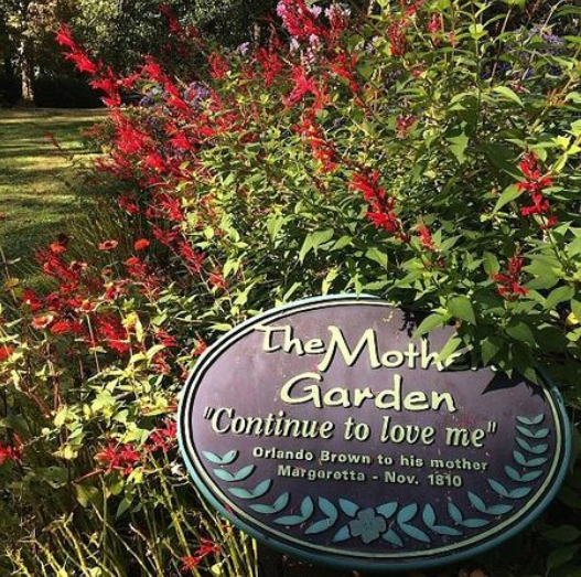 The Moth Garden, part of the gardens at Liberty Hall. Credit: TripAdvisor