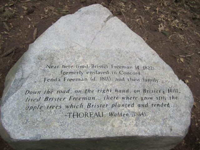 This marker includes a quote from Thoreau's Walden which gave the location of Freeman's home.