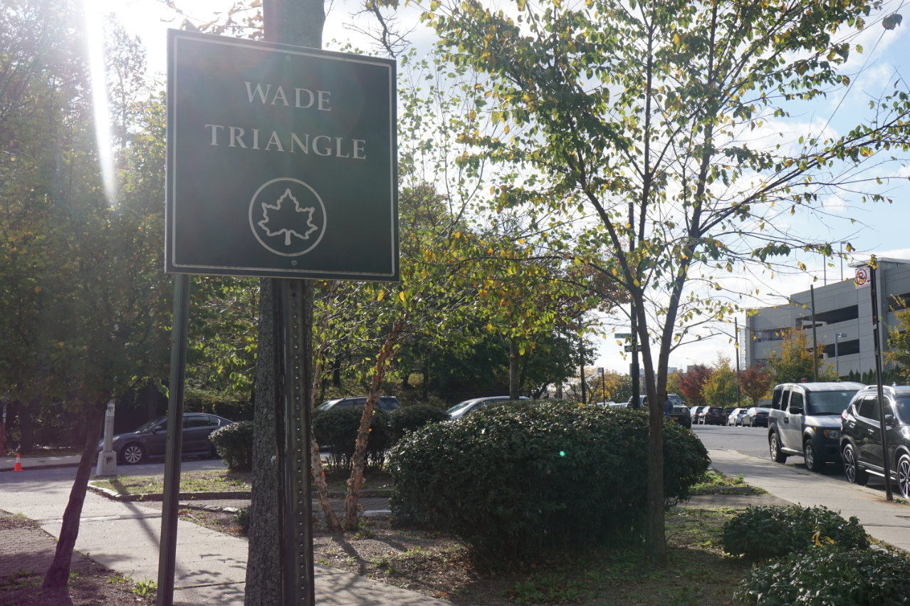 Wade Triangle, Sign and Plot (11/2/19)