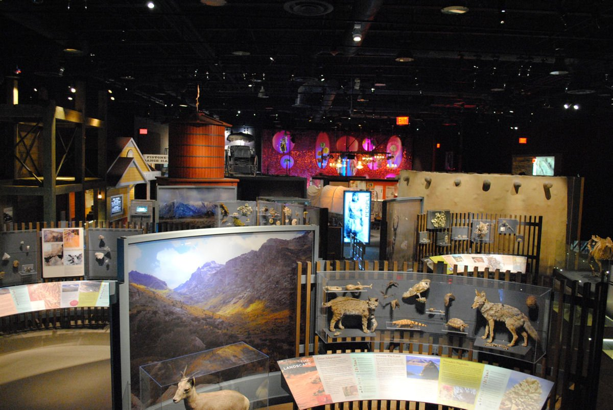 The museum's exhibits feature interpretive panels, mounted animals, fossils, and other items on display.