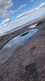 Vernal Pools that are located on Enchanted Rock.