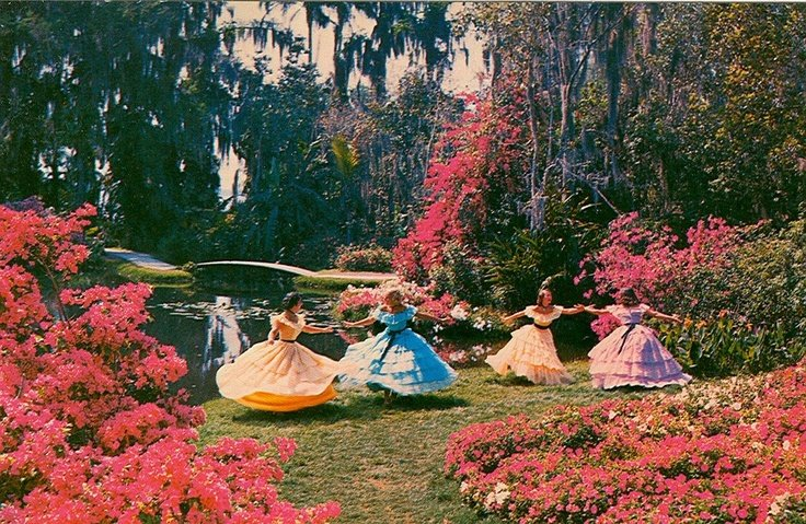 Southern Belles in the Gardens