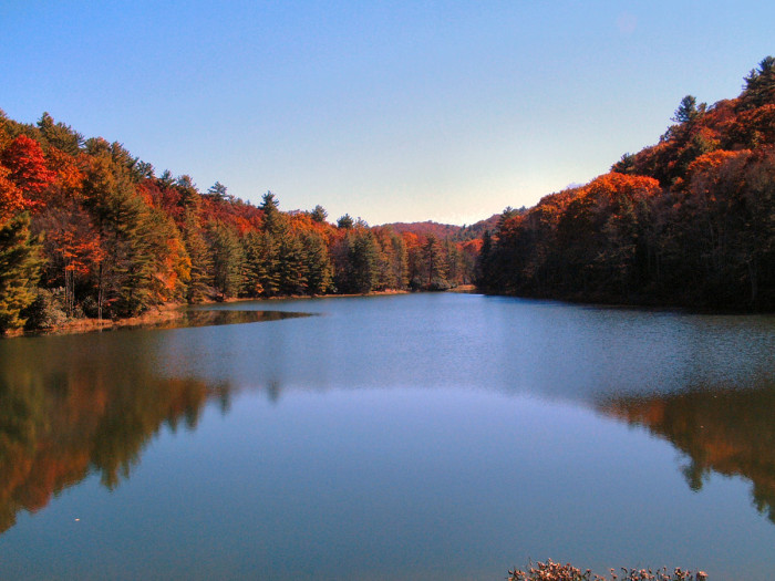 This is a current picture of Watoga State park, its beauty is astonishing but the history behind it is breathtaking. Not many people know that this lake is only here because the thousands of men that worked on it every day; luckily the park provides information on the history that is so visible if you know exactly where to look. On some of the trails there are even small log cabins used as a pit stop for people on their long hike, Honeybee Trail being home to one of those. Luckily you can learn about the history when you are checking in, there is a little museum that has lots of artifacts and pictures of the CCC camp that built the foundation of this beautiful park.