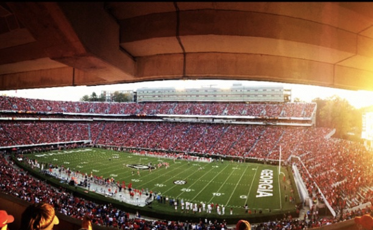 Stadium View