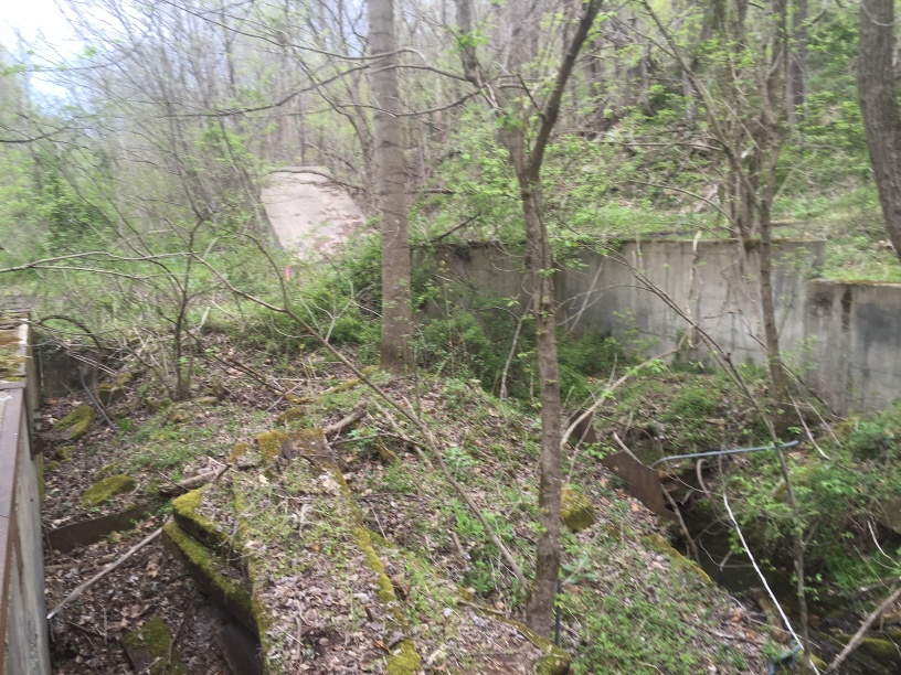 Ruins of the Royal Coal Company