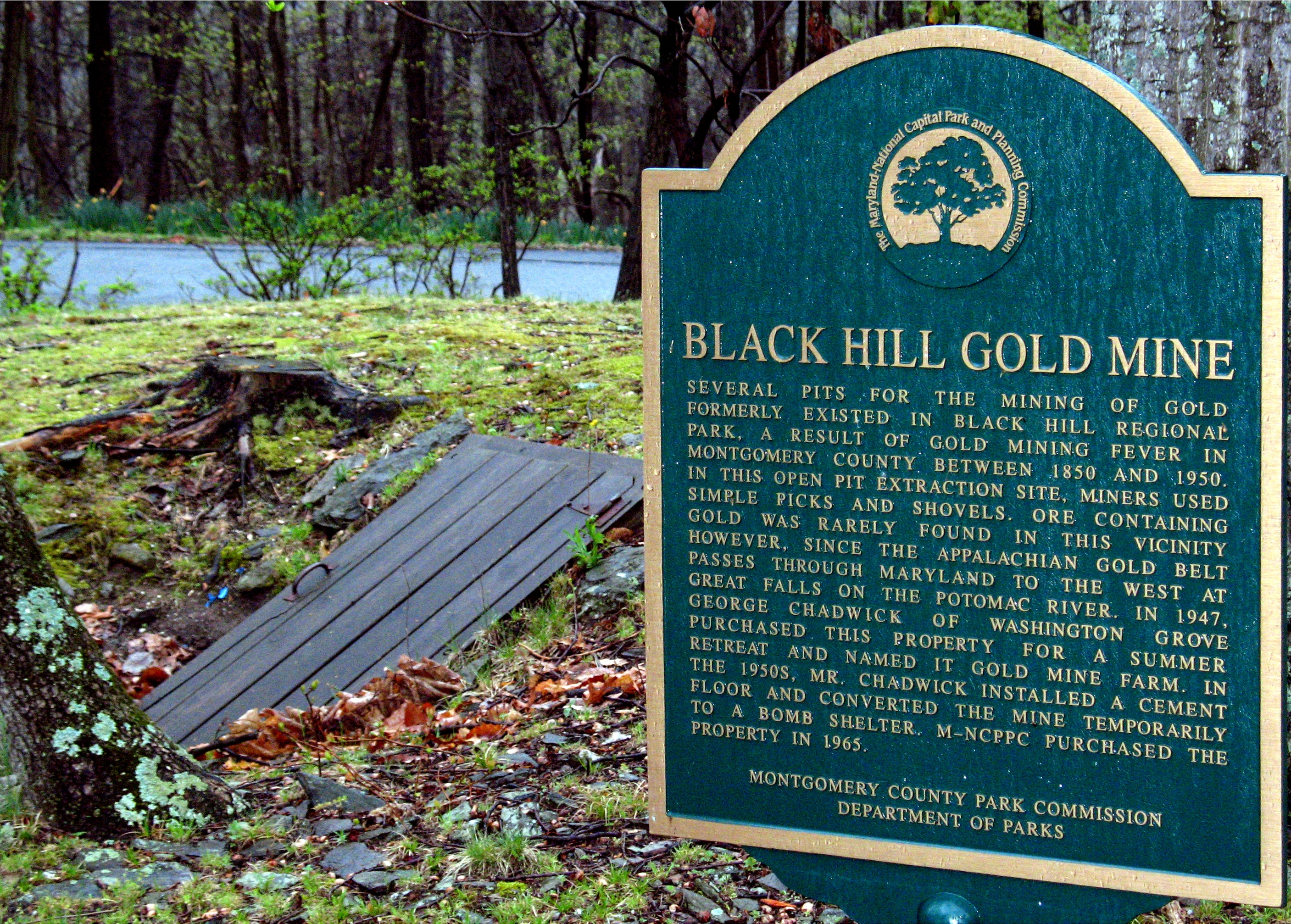 Black Hill Gold Mine