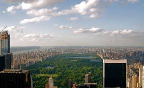 The view of Central Park from the observation deck