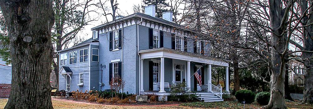 Plant, Window, Property, House