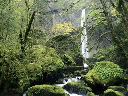 Elowah Waterfall, Columbia River Gorge