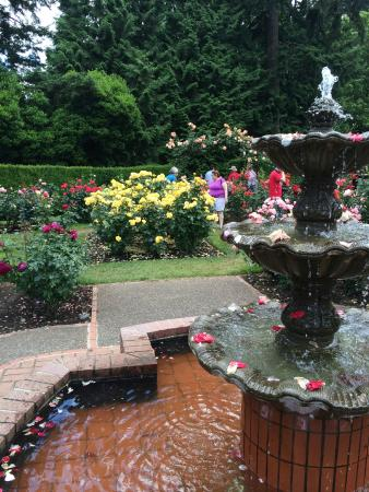 Washington Park features numerous attractions including gardens, museums, the Portland Zoo, and an arboretum.