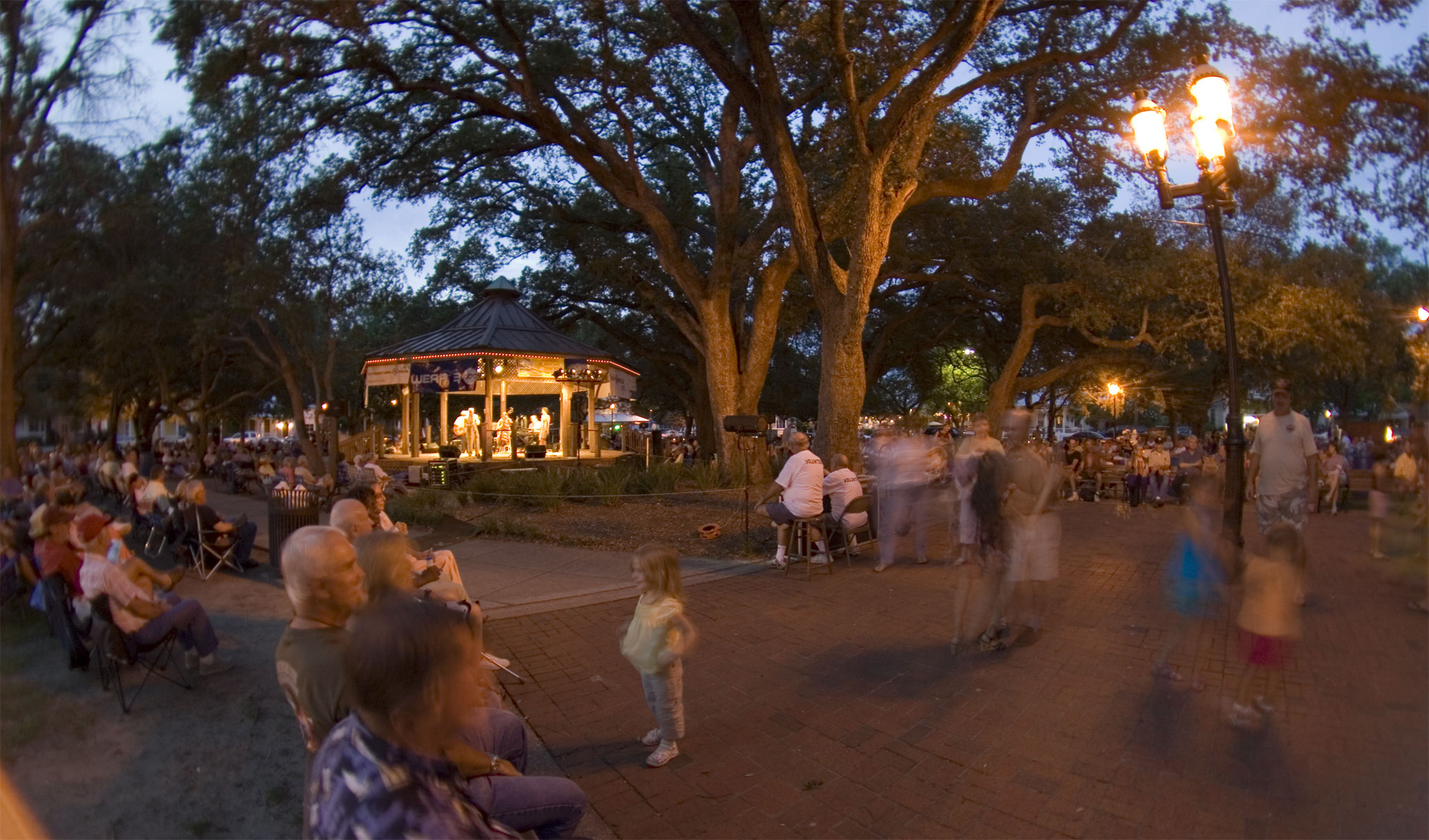 Crowd, Night, Tree, Evening