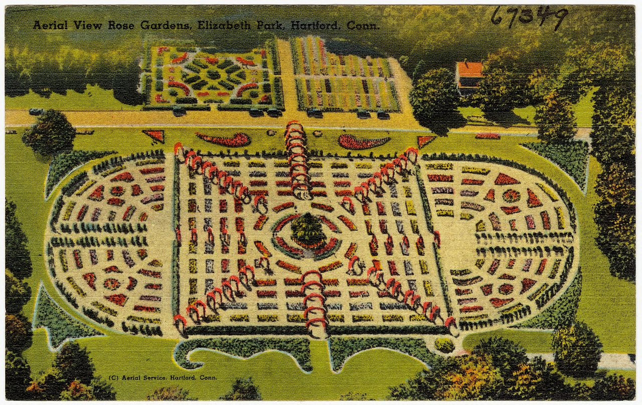 Aerial view of the rose gardens - vintage postcard, circa 1930-1945.