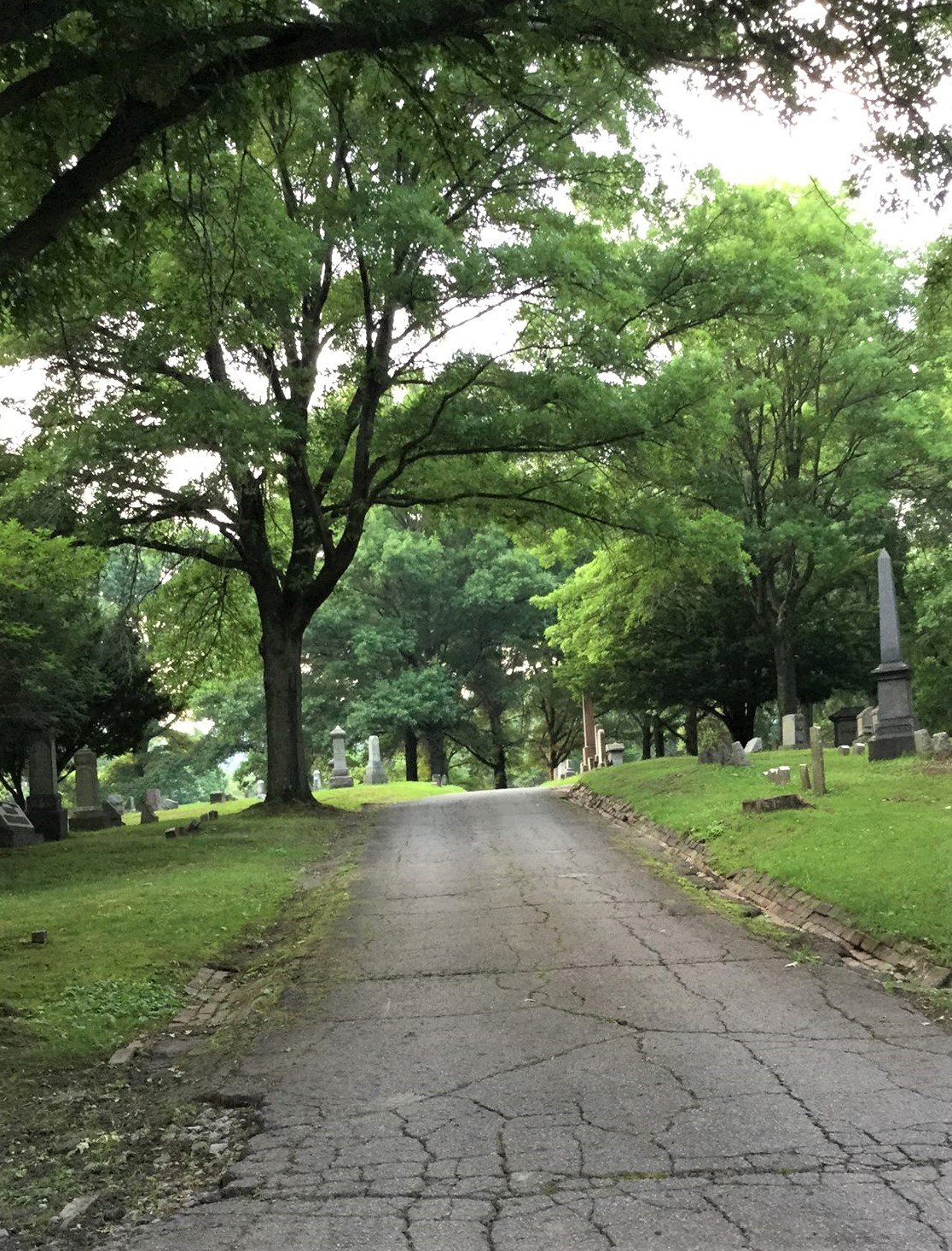Mount Rose cemetery, driving north.