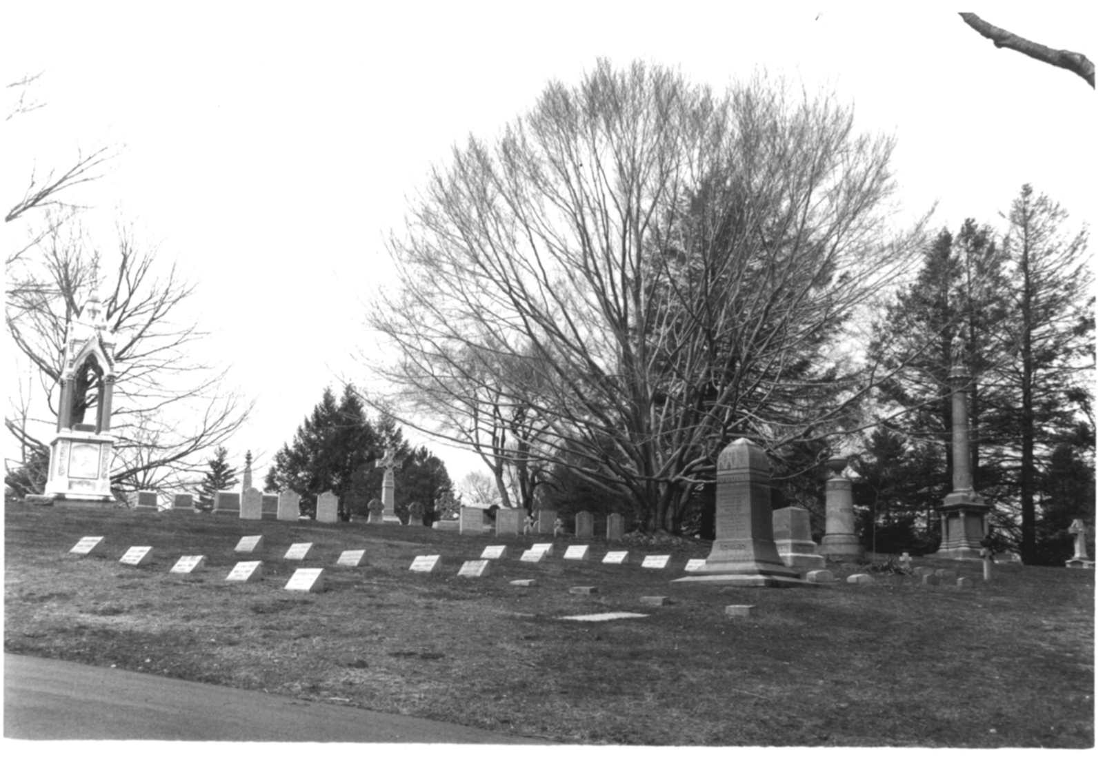 1997 NPS Photo Record of Cedar Hill Cemetary #9