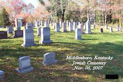 Middlesboro Jewish Cemetery in 2007
