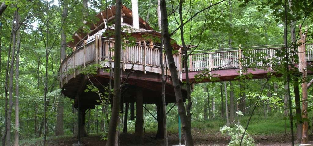 The handicap accessible Everybody's Treehouse in Mount Airy Forest.