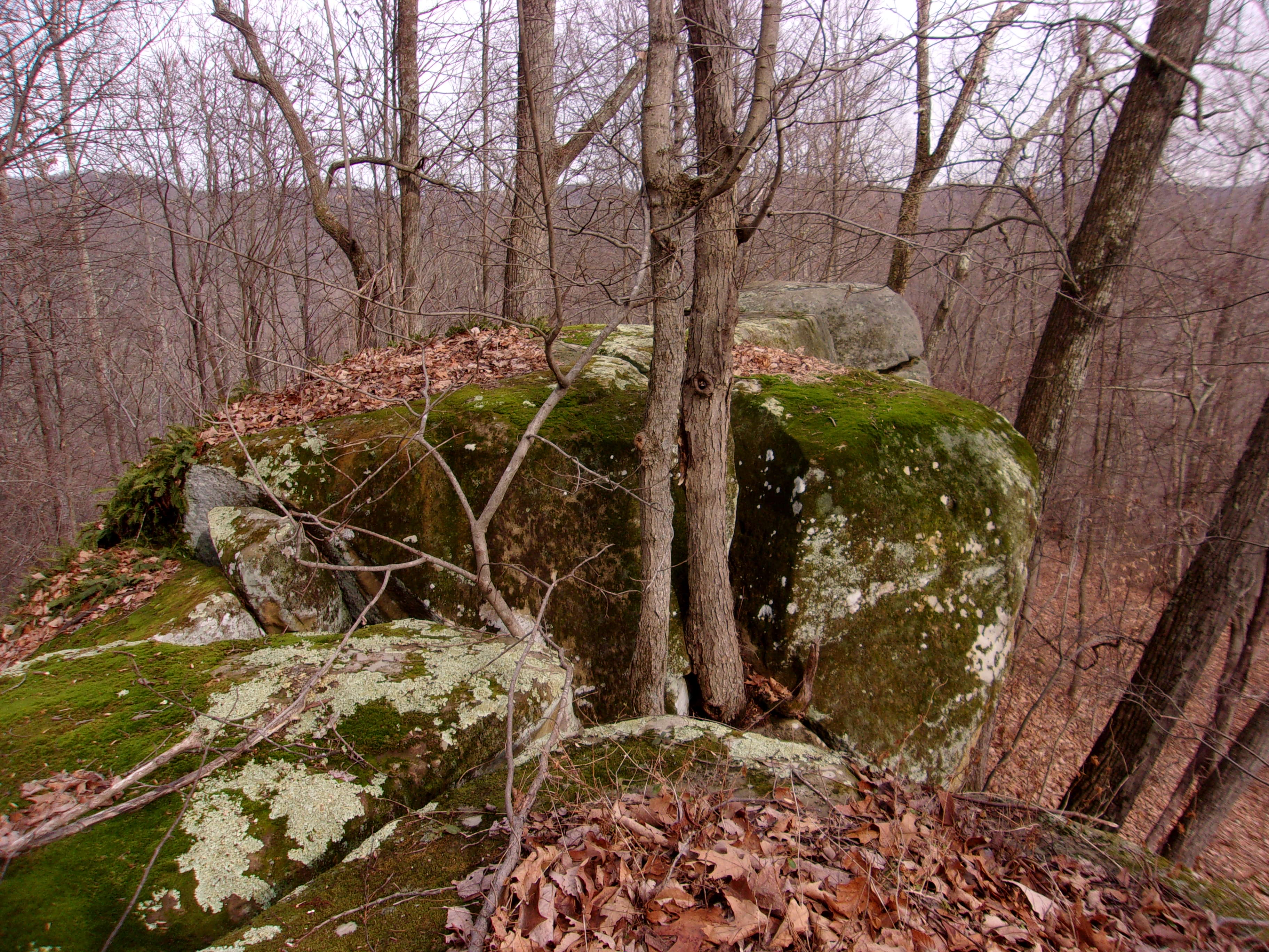 View on top of Menges Rocks looking northeast.