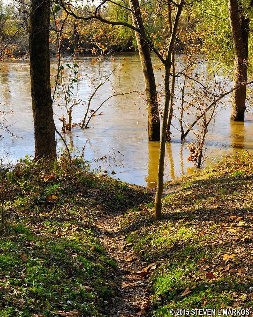 This trail leads to the Duck River's edge. Be careful! You could wind up in the river if you slip on the trail when it is wet. Photo: Steven L. Markos.