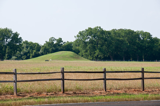 View of the mounds site